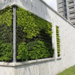 TAIWAN PROJECT GREEN WALL