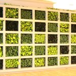 UBS GREEN WALL