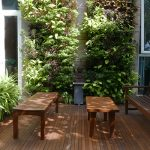 Toh Residence Green Wall 2
