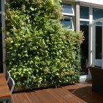 Toh Residence Green Wall 3
