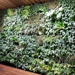 Wood and Wood Green Wall