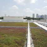 RD300-green-roof-singapore