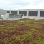 sungei-seletar-bus-depot-green-roof