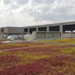 sungei-seletar-green-roof
