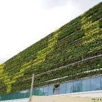 Decathlon-Green-Roof