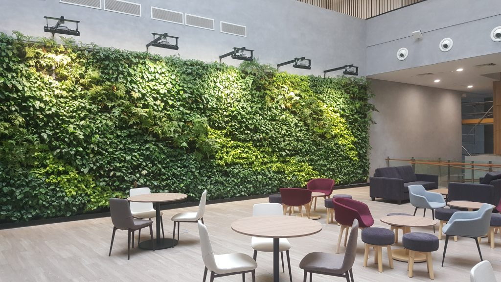 Green Potted Wall