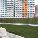 Rivervale-green-roof-3