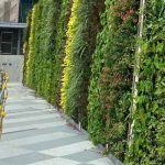 ion-orchard-green-wall-3