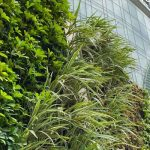 ion-orchard-green-wall-4