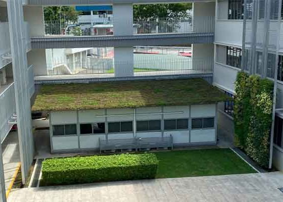pathlight-green-roof